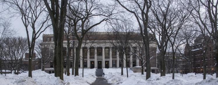 Harvard University snow